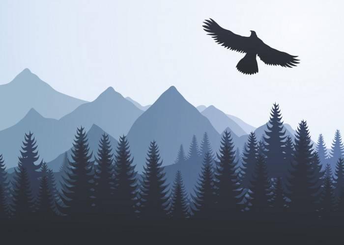 Печать на холсте Орел над лесом