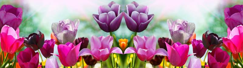 Скинали для кухни Разноцветные цветы
