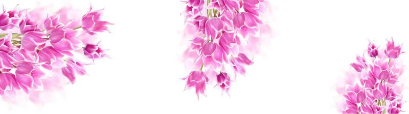 Скинали для кухни Сиреневые цветы