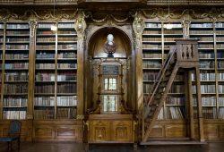 Библиотека, дизайн #05842