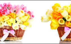 Тюльпаны в корзинах, дизайн #05985