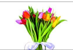 Букеты тюльпанов, дизайн #05987