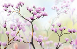 цветы на ветвях, дизайн #06299