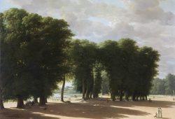 Парк в Сен-Клу, дизайн #06799