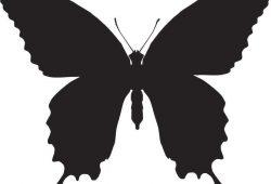 Бабочка, дизайн #06986