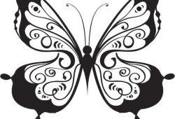 Бабочка, дизайн #07003