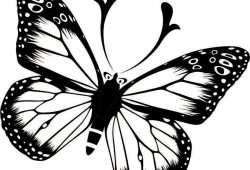 Бабочка, дизайн #07007