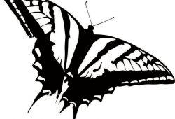 Бабочка, дизайн #07009