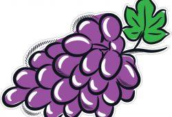 Виноград, дизайн #07244