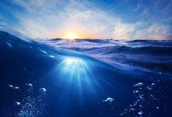 Под водой, дизайн #07488