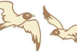 Чайки, дизайн #07568