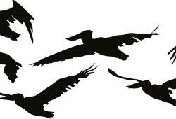 Стая птиц, дизайн #07655