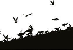 Стая птиц, дизайн #07658