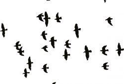 Стая птиц, дизайн #07659