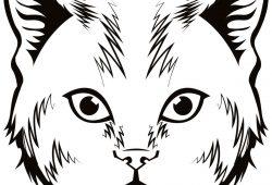 Рысь, дизайн #07697