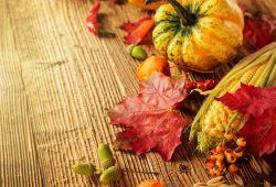 Осенний урожай, дизайн #07717