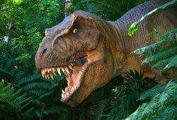 Динозавр, дизайн #07731