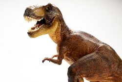 Динозавр, дизайн #07733