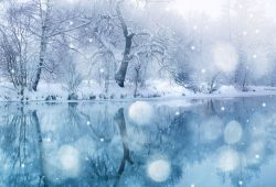 Зимняя река, дизайн #07887