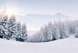 Зимний пейзаж, дизайн #07891
