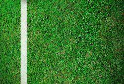 Футбольное поле, дизайн #07900