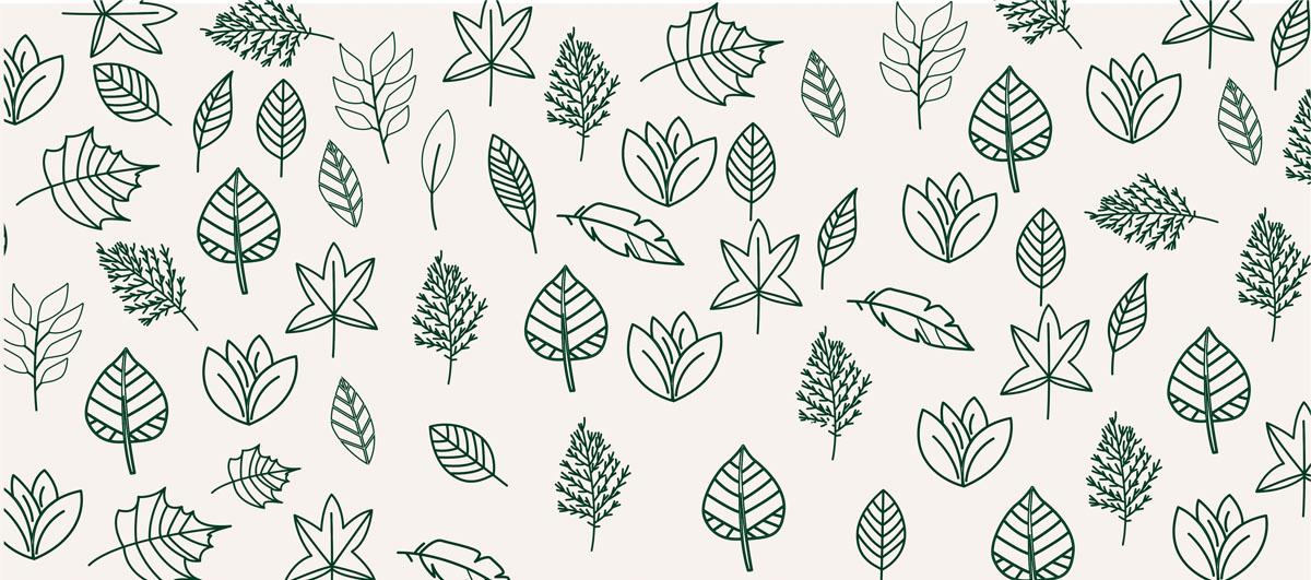 Листья, дизайн #07987