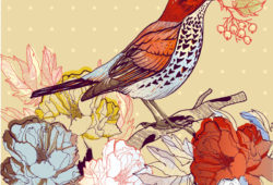 Птица, дизайн #08022
