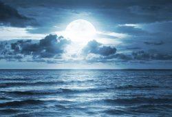 Ночное море, дизайн #08187