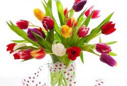 Букет тюльпанов, дизайн #08320