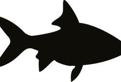 Рыбка, дизайн #08359