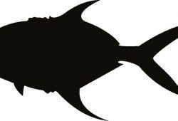 Рыбка, дизайн #08361