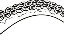 Щупальца осьминога, дизайн #08385