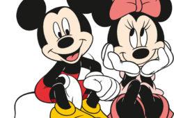 Микки Маус и Минни Маус, дизайн #08565