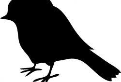 Птичка, дизайн #0852217