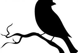 Птичка, дизайн #0852817