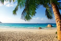 Пляж, дизайн #0856417