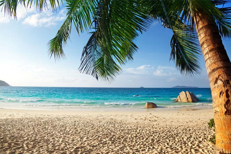 Фотообои под заказ Пляж, дизайн #0856417
