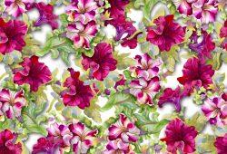 Цветы, дизайн #0859217
