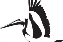 Птица, дизайн #08659