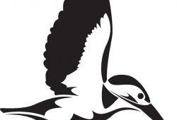Птица, дизайн #08660