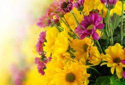 Букет цветов, дизайн #08700
