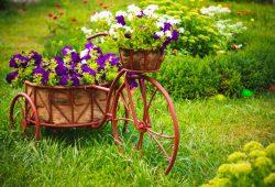 Цветы, дизайн #08714