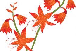 Цветочек, дизайн #08800