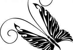 Бабочка, дизайн #08804