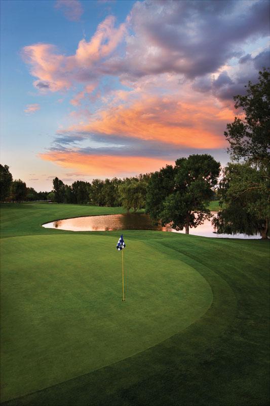 Фотообои под заказ Поле для гольфа, дизайн #09202