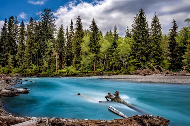 Фотообои под заказ Река в лесу, дизайн #09217